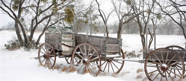 Wagon in Winter